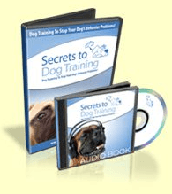 Secrets To Dog Training Review by Daniel Stevens