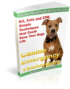 Canine Emergency Techniques by Dan Scott © HealthyDogForLife.com
