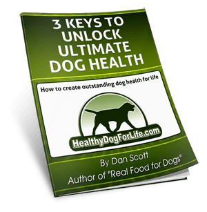 7 easy ways to boost your senior dogs health fast healthy dog 3 steps to unlock ultimate dog health fandeluxe PDF
