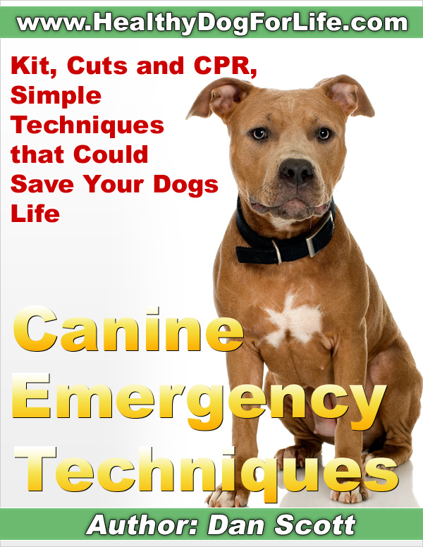 Canine Emergency Techniques by Dan Scott