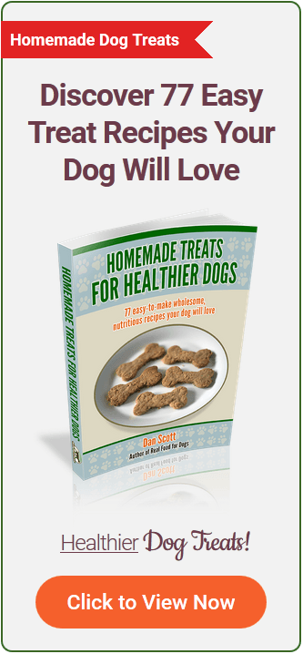 Airedale Terrier Diets Matter: Book On Homemade Dog Food, Blank Recipe Cookbook, 7 x 10, 100 Blank Recipe Pages
