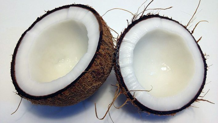 7 Reasons Your Dog Needs Coconut Oil for Better Health